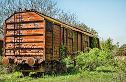 Railway wagon captured by vegetation. Stock Images