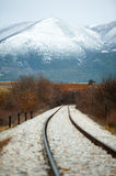 Railway in the winter Royalty Free Stock Image