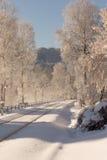 Railway in winter Stock Images