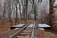 Railway in the winter forest Royalty Free Stock Images