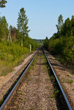 Railway in wood Royalty Free Stock Photo