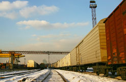Railway yard. Clear winter day royalty free stock photography