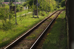 Railways in the forrest. Calmng and positive Stock Photography