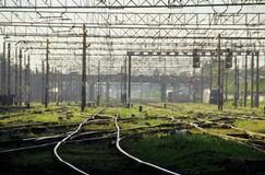 Railways, grass and cables Stock Images