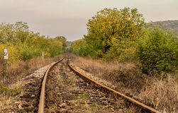 Railways. Lonely rusty railways surrounded by colored in yellow autumn trees and dry bushes Stock Image