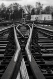 Railyard,. Branched yard in a small railway station Royalty Free Stock Photos