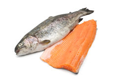 raimbow trout with fillet Royalty Free Stock Images