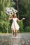 Rain Royalty Free Stock Image