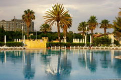 After the rain. Pool and palm after the rain in Turkey Royalty Free Stock Photography