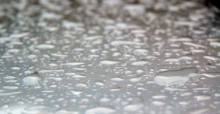 After rain Royalty Free Stock Image