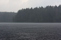 Rain. A heavy rain by the lake royalty free stock photography