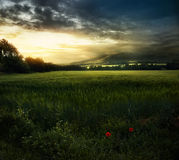 After the rain. The green field on the background of the mountains at sunset in Tuscany Stock Image