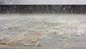 Rain. Heavy shower. fine drops of rain Royalty Free Stock Images