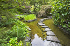 Rain. A footpath from stones laid with brick through a fine pond in Japanese garden, during a rain Stock Photo