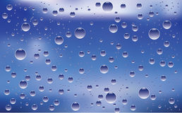 After a rain. Royalty Free Stock Image