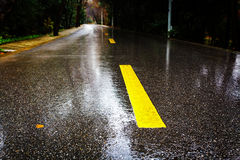 Rain asphalt road Stock Images
