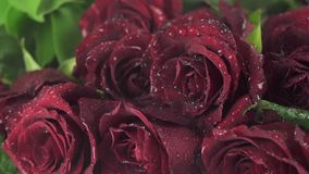 Rain on beautiful bouquet of red roses slow motion stock footage video stock footage