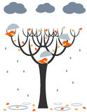 Rain birds. Cute birds with umbrellas under the rain Royalty Free Stock Images