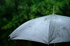 Rain on a black umbrella Royalty Free Stock Photo