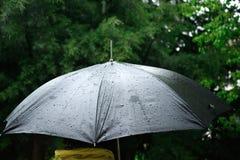 Rain on a black umbrella Royalty Free Stock Image