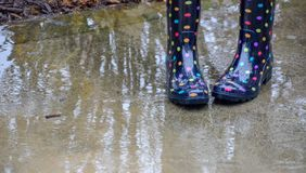 Rain boots and puddles. Rain boots and puddles with the reflections of bushes and trees stock photo