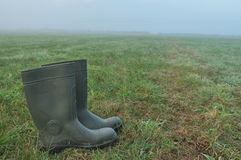 Rain boots, rubber boots standing on a wet meadow. Fog in the morning. Royalty Free Stock Photography