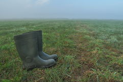 Rain boots, rubber boots standing on a wet meadow. Stock Photos