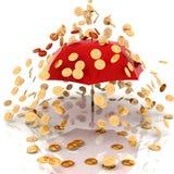 Rain from chinks Royalty Free Stock Photo