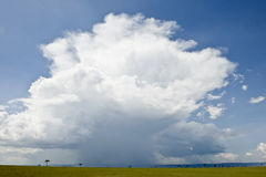 Rain cloud over Africa landscape. Serengeti National Park, Serengeti, Tanzania stock images