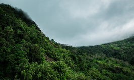 Rain clouds grazing mountain crest (Jungle) royalty free stock photography
