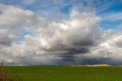 Rain clouds impend the green field with the young shoots Stock Images