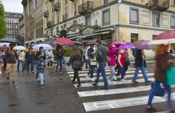 Rain in the Como. Stock Image