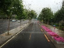 Rain Dalian China. Rain season Dalian China street royalty free stock images