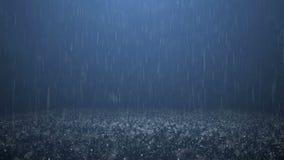 Rain stock video