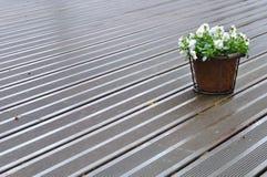 Rain on deck Royalty Free Stock Photo
