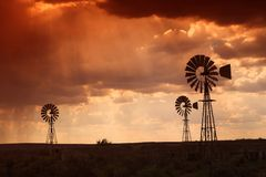 Rain in the dessert at sunset Stock Photography