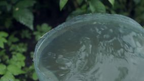 Rain drips into the bucket. The rain drips into the bucket in the garden stock video footage