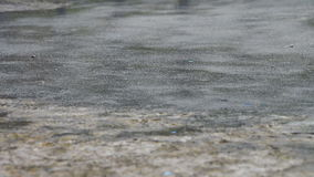 Rain Drips Through The Puddles. Summer rain drops falling on the pavement. Full HD 1920 x 1080p, 29,97 fps stock footage