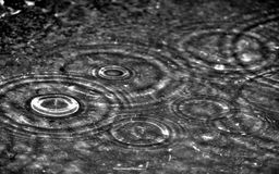 Rain drop. Beautiful rain drops falls on water stock photos