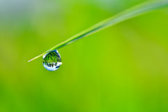 Rain Drop and bokeh Stock Images