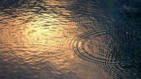 Rain drop falling on swiming pool. Rain drop falling on swiming pool and ripple shape and sun light reflection on water surface Royalty Free Stock Images
