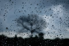 Rain drop on glass car. With lonely tree background Royalty Free Stock Image