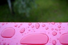 Rain drop  red metal plan Stock Photography