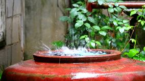 Rain drop to big water jar to use in the dry season in rural country stock footage