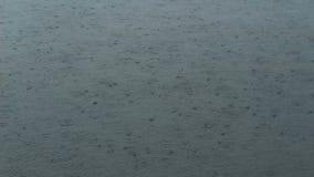 Rain drop on water stock video