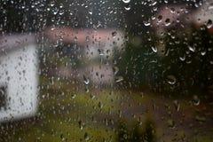 Rain drop Royalty Free Stock Image