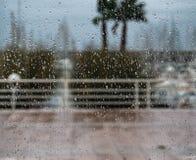 Rain drop. On the window Stock Photos