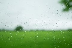 Rain drop on the window with tree and sky background in flied us. E for background Royalty Free Stock Photos