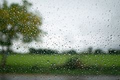 Rain drop on the window with tree and sky background use for bac. Kground Stock Image