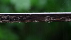 Rain drop on the wood stock video footage